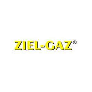 ZIEL-GAZ